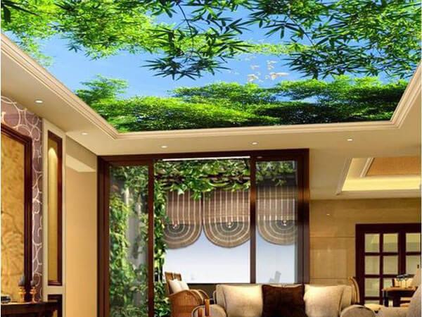 طرح طبیعت در سقف شما
