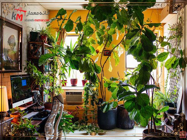 پر کردن فضاهای خالی با گل و گیاه
